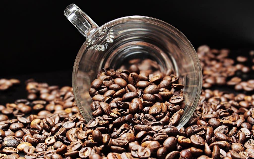 coffee beans 2258839 1920 - El secreto de un buen  café